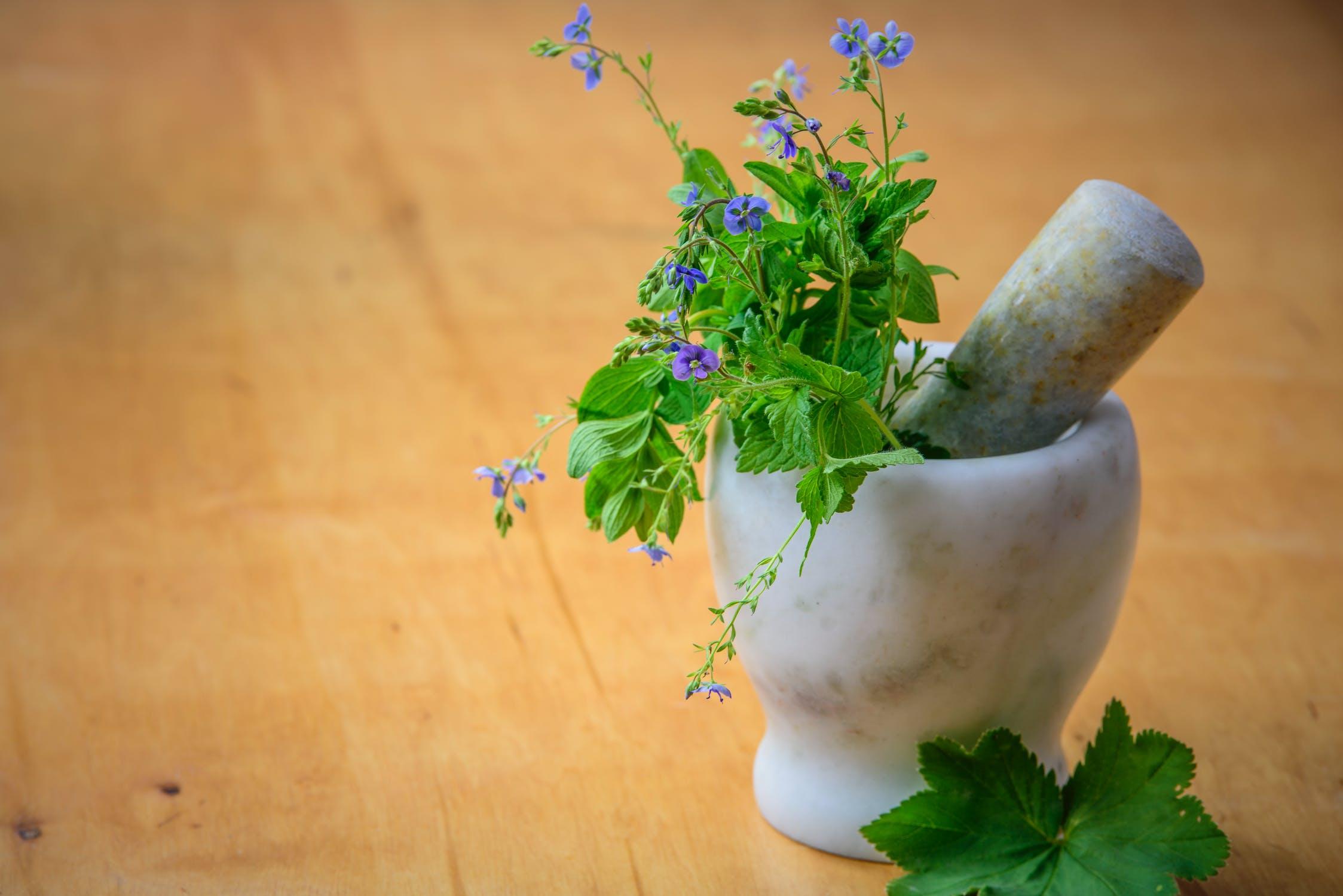 Herbal & Nutra Thumbnail